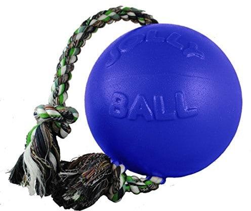 Jolly Pets joll049°F psy do zabawyball romp-N-Roll, 10cm, niebieski 645 BL - 1 zdjęcie